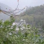 Rishikesh Frühling 2016 171
